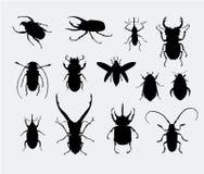 Siluette dello scarabeo Fotografie Stock Libere da Diritti