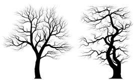 Siluette di vecchi alberi sopra fondo bianco Fotografia Stock