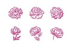 Siluette di vettore dei fiori disegnati a mano della peonia isolati sull'illustrazione bianca del fondo royalty illustrazione gratis