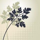 Siluette di vettore delle piante Fotografia Stock