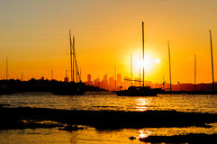 Siluette do por do sol Imagem de Stock Royalty Free