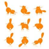 Siluette grasse arancioni divertenti dei gatti per il vostro disegno Immagini Stock