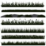 Siluette nere dell'erba fotografia stock libera da diritti