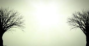 Siluette nude degli alberi royalty illustrazione gratis