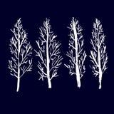 Siluette nude degli alberi Insieme disegnato a mano Illustrazione di vettore illustrazione vettoriale
