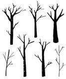 Siluette nude degli alberi messe Illustrazioni isolate disegnate a mano Illustrazione della natura illustrazione vettoriale