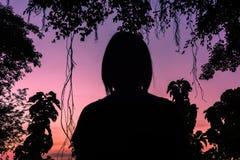 Siluette, tramonti fra gli alberi Fotografie Stock