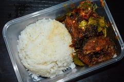 Siluro picante en el arroz superior en sistema de la caja Fotos de archivo