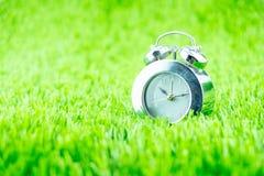 Silver alarm clock on green grass Stock Image