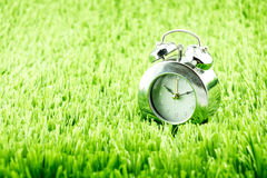 Silver alarm clock on green grass Stock Photo
