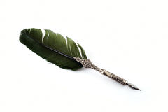 Silver ancient feather. Of green color Stock Photo