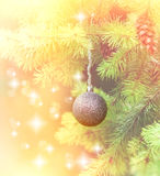 Silver bauble on branch of Christmas tree Royalty Free Stock Photo