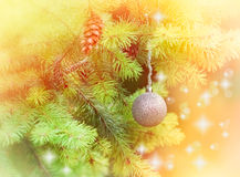 Silver bauble on Christmas tree Stock Images