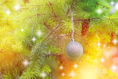 Silver bauble on Christmas tree (xmas ball) Stock Photography