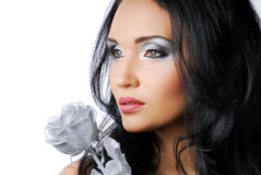 Silver Beauty Royalty Free Stock Image