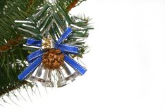 Silver bells on branch fir Stock Images