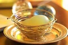 The Silver Birds nest royalty free stock photography