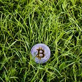 Silver bitcoin in grass. Digital currency physical silver bitcoin in grass Royalty Free Stock Photos