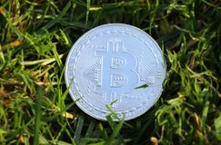A silver bitcoin in the middle of grass. New era of currency is here. Now is bitcoin famous band. Money Stock Photography