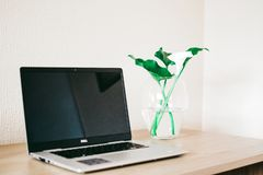 Silver and Black Dell Laptop Beside White Calla Lily in Clear Glass Vase on Brown Wooden Desk stock photos