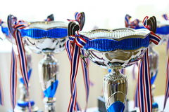Silver & Blue metal trophy. Two Silver & Blue metal trophy Royalty Free Stock Photos