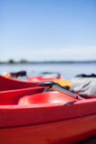 Silver Boat Paddle in Red Kayak at Daytime Royalty Free Stock Images