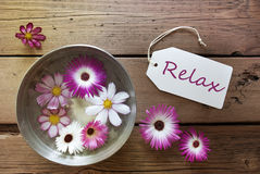 Silver Bowl With Cosmea Blossoms With Text Relax Stock Photo