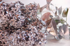 Silver branch of lilac on the table Royalty Free Stock Image