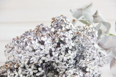 Silver branch of lilac on the table Stock Photo