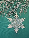 Silver branch and snowflake Stock Images