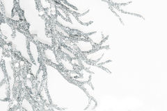 Silver Branches. Sparkling silver branches against white background stock photo