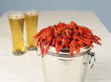 Silver bucket of boiled crawfish Stock Images