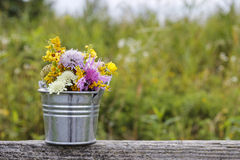 Silver bucket with wild flowers royalty free stock image