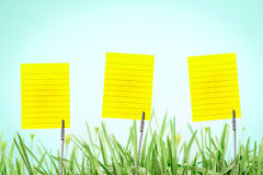 The Silver Business Card Holder on fresh green grass with drople Stock Images