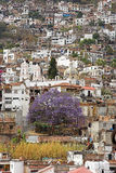 Silver Capital - Taxco, Mexico. Taxco is the silver capital of the world.  It is famous for its silver mines and silverware. The crowed scene of this town on Stock Images