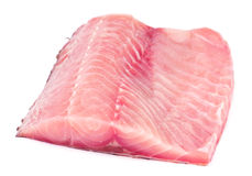 Silver carp fillet Stock Photography