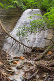 Silver Cascade at Shades. Silver Cascade is a beautiful convex waterfall that shimmers down a rock face in Indiana's Shades State Park Stock Photos