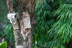 Silver CCTV Camera Stock Image