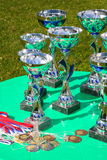 A silver champion trophy cup Stock Photos