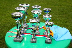 A silver champion trophy cup Stock Image