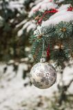 Silver Christmas ball on a snow-covered tree branch Royalty Free Stock Image