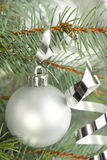 Silver christmas balls. With a christmas tree royalty free stock images