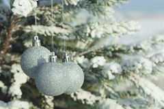 Silver Christmas balls hanging on a branch of fir tree Stock Images