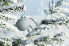 Silver Christmas balls hanging on a branch of fir tree Royalty Free Stock Image