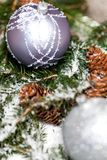 Silver Christmas bauble on a tree with snow Royalty Free Stock Images