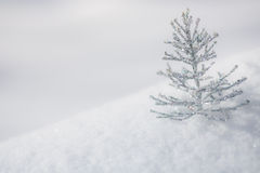 Silver Christmas decoration on snow Stock Photography