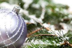 Silver Christmas ornaments in leaves Royalty Free Stock Image