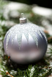 Silver Christmas ornaments in leaves Stock Image