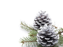 Silver Christmas Pine Cones Royalty Free Stock Images