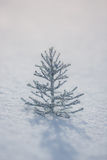 Silver Christmas tree decoration on snow Stock Images